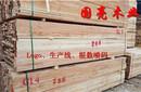 工地木方铁杉方料按需加工加拿大花旗松