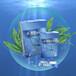 藻狐酵素海藻凍招商
