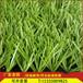 优质长草足球场草皮人造草坪观光休闲仿真地毯草坪假草皮