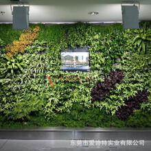 北京富拉沃生态科技有限公司
