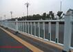 广东道路护栏厂家