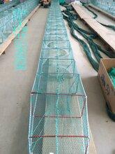 八米十八米地笼网厂家批发