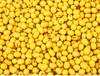 常年求购大豆玉米高粱等饲料原料