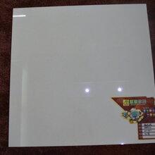800x800抛光砖白聚晶佛山陶瓷厂家工程批发地板砖图片