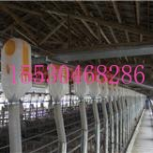 供应自动化设备限位栏料线复合板限位栏自动给料设计