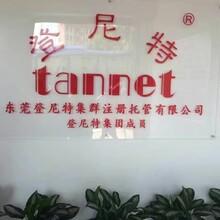 专业代理东莞公司注册,记账报税,餐饮许可证