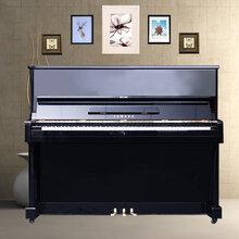 河南郑州最大的乐器批发市场在哪/钢琴/吉他/古筝等