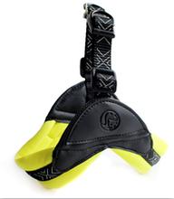 东莞宠物带厂家自产自销简单时尚舒适潜水料宠物三角胸背+牵引套装