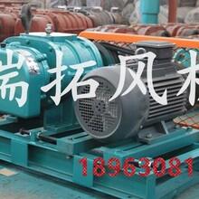 三明RTSR50曝气罗茨风机水处理风机信誉保证图片