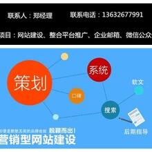 龙岗布吉做个网站多少钱,有没专业的网站建设公司