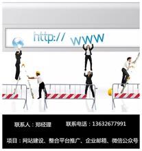 坂田网站建设公司有没收费合理且专业的