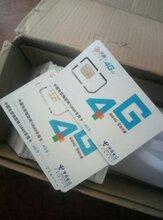 英邦科技网卡1g免费送