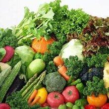 采购番茄等各种蔬菜