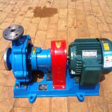 导热油泵RY热油泵风冷式热油泵高温热油泵厂家直销