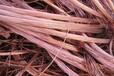 宁夏银川废铜回收价格怎么样废铜线回收废铜铝回收宁夏电缆回收