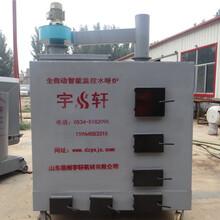 育苗升温燃气锅炉种植业升温锅炉的标杆宇轩燃气锅炉