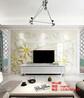 客厅精雕电视背景墙护墙板罗马柱搭配