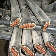 电缆回收_废旧电缆回收_电线电缆回收