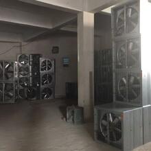 厂房车间仓库通风降温设备负压风机降温水帘墙