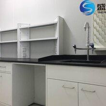 实验室家具通风柜文件柜气瓶柜