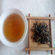 供应井袖红茶叶优质高档高山茶