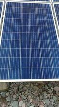太阳能光伏组件采购