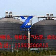 供应裕隆钢板仓1寸气化管流化棒150吨水泥罐,卷板仓图片