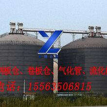 供應裕隆鋼板倉1寸氣化管流化棒150噸水泥罐,卷板倉圖片