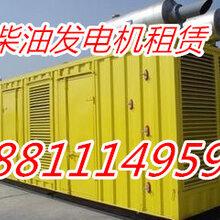 徐水县发电机出租保定市大型发电机租赁图片