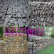 雷诺护垫格宾石笼高尔凡雷诺护垫镀锌石笼网拧花网鑫隆石笼网厂家直销