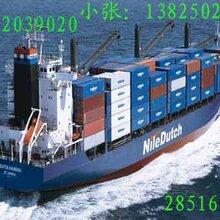 霸州到广州海运禹航物流海运价格海运船期