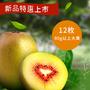 南泥湾平台2017年四川红心猕猴桃和黄心猕猴桃的区别图片