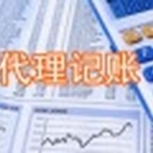 高效率的财税会计专业服务