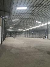 广州恒温仓库业务图片