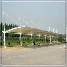 厂家直销膜结构停车棚自行车车棚膜布加工膜结构汽车停车棚