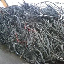 诚信回收电缆废铜