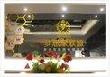 深圳市梦想家联盟科技有限公司提供演出场馆装修图片