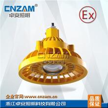 浙江直销LED免维护防爆灯吸顶灯20W30W40W圆形集成LED防爆灯