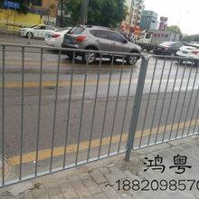 道路隔离护栏厂家/鸿粤现货深标护栏/公路护栏厂家直销图片