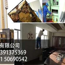 上海浦东保洁公司浦东金桥镇地毯清洗办公室清洗地毯日常保洁擦玻璃