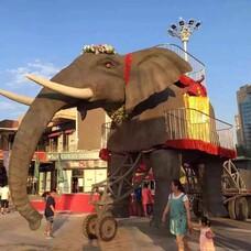 机械大象出租,机械大象巡游,机械大象展览方案,巡游机械大象出租