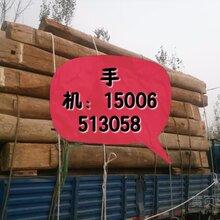 常年大量銷售批發/加工/定制/各種規格的老榆木板材圖片