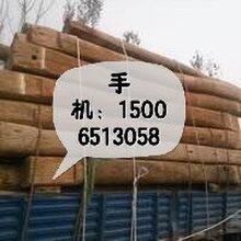 哪里有老榆木板材_老榆木木材價格采購介紹圖片