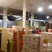 江南优鲜提供进口水果批发和进口零食批发