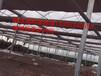 温室田园综合体,江苏智能温室建设,西安温室大棚