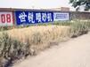 略阳县手绘墙体略阳县刷墙广告182-2055-8123热点排察