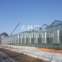 东北阳光板温室怎么制作更保暖呢