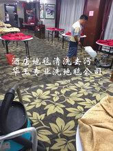 广州天河商铺地毯清洗办公区、酒店地毯清洁除尘去异味