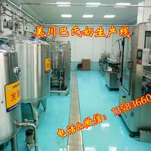 小型乳品生产线低温乳品生产线牛奶生产线