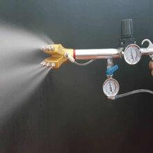 喷雾消毒喷雾免疫喷雾给药加湿降尘